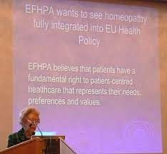 Enid Segall, President of EFHPA, speaking at at ECH GA Brussels 2010